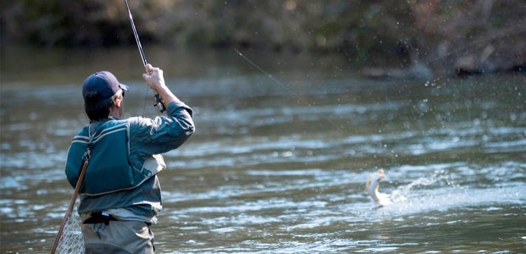 fishing-and-angling