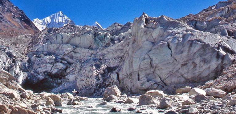 Gangotri Tapovan Trek