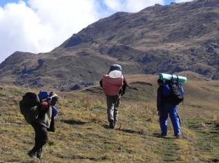 Kauri-Pass-Trek