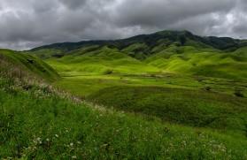 Dzukou-Valley