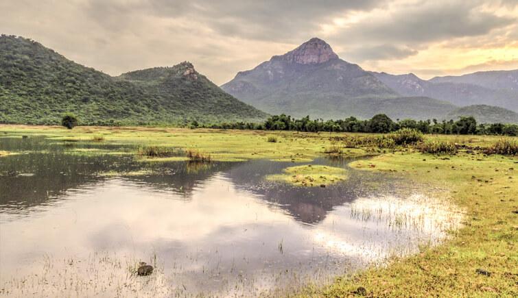 Nagalapuram-Trek