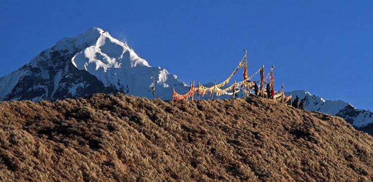 Singalila Ridge Trek