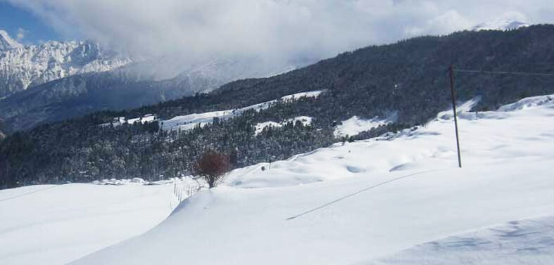 Auli Snow View Trek