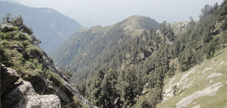 Dharamshala to Triund Trek Route